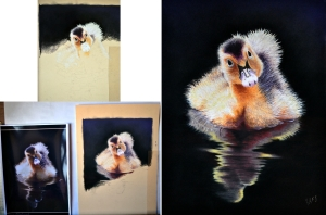 Duckling on pastel mat 11.1