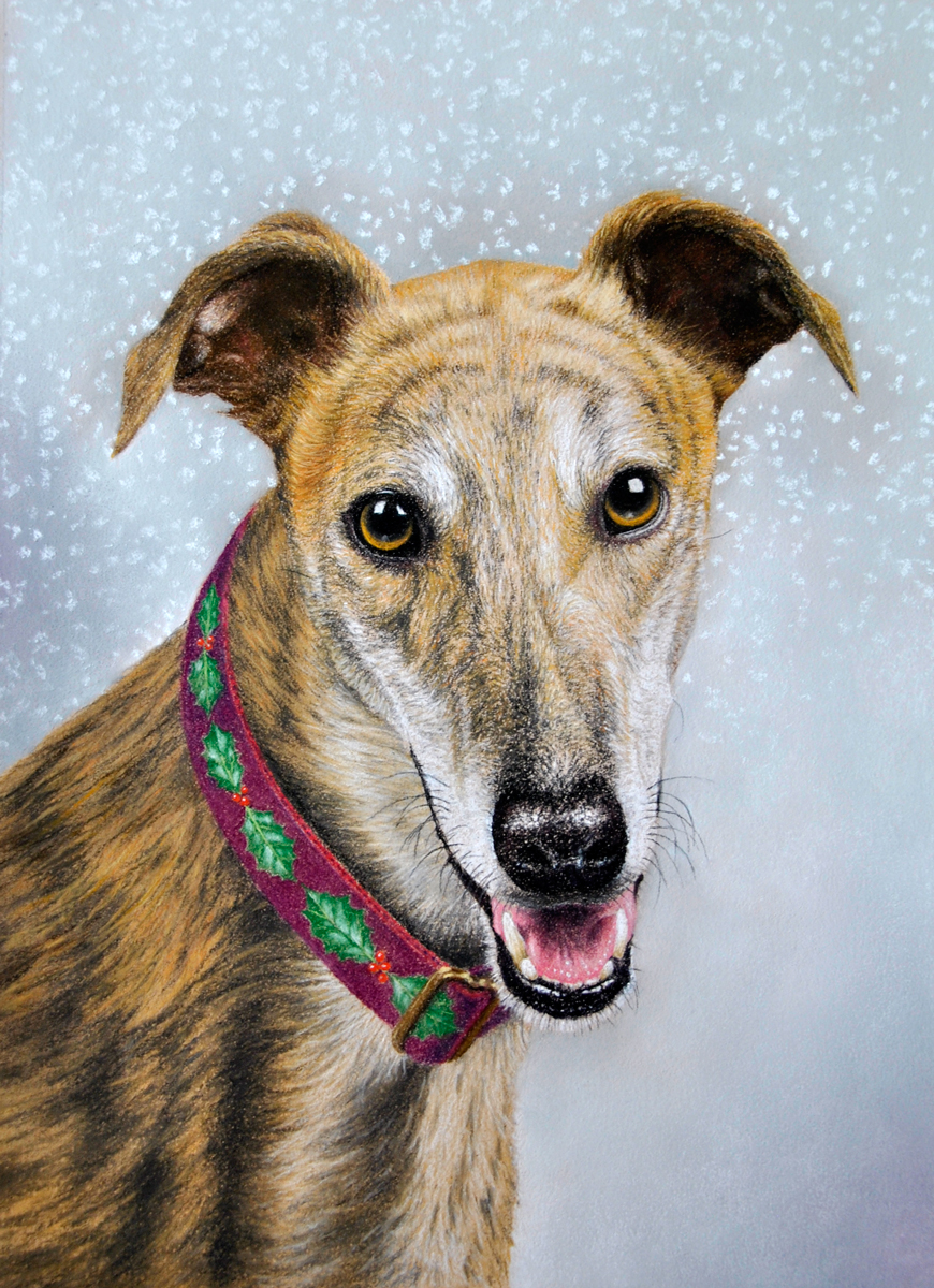 Christmas-greyhound-complete