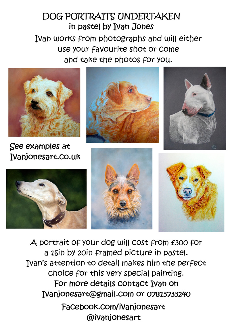 Dog-commission-leaflet-Brecon