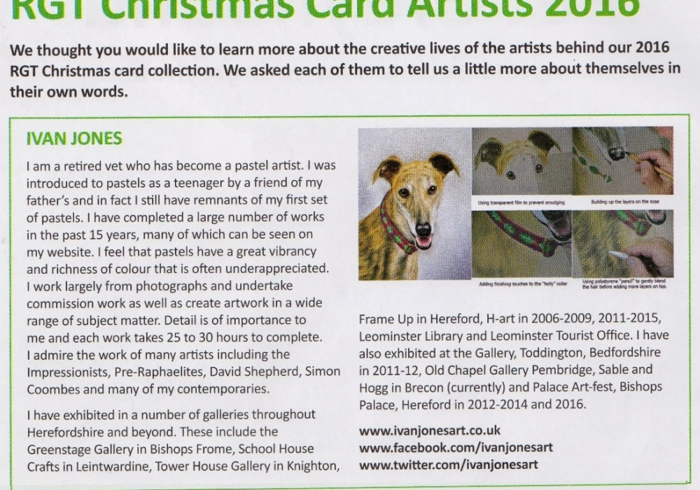 My portrait of a greyhound will be on charity Christmas cards ...