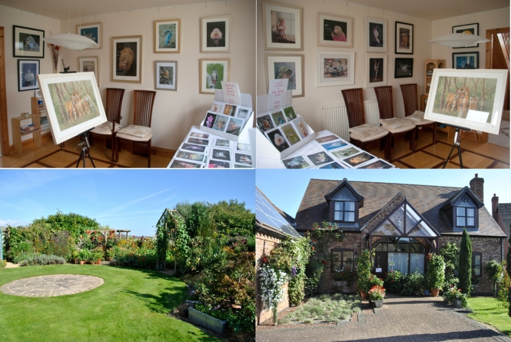 Collage art and garden