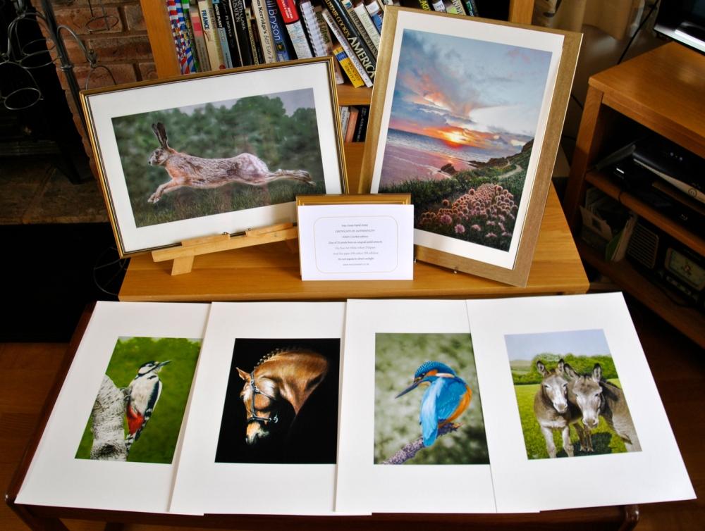 Sample-prints